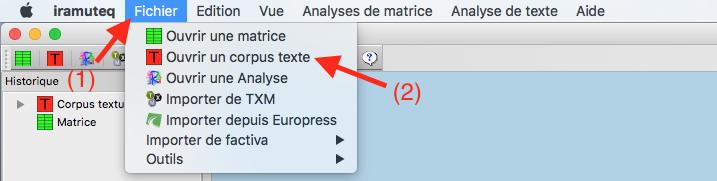 Capture d'écran du programme Iramuteq importation du corpus