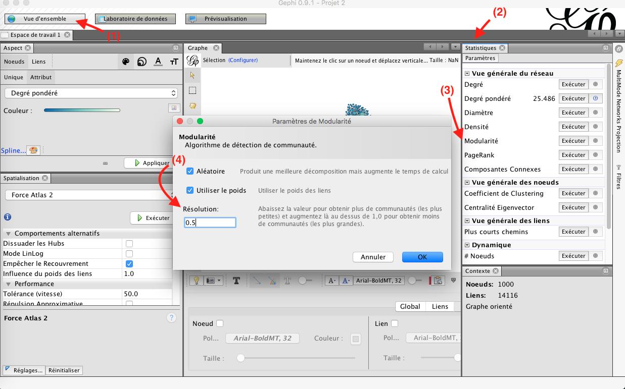 Capture d'écran du programme Gephi modularité