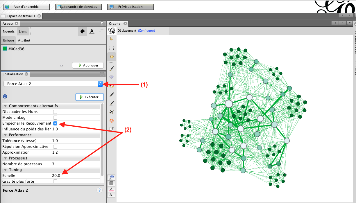 Capture d'écran du programme Gephi force atlas